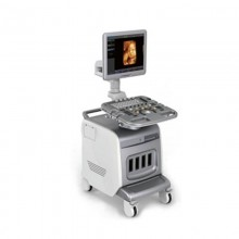 Trolley Color Doppler (Optional 4D) Ultrasound Scanner with CONVEX andLINEAR
